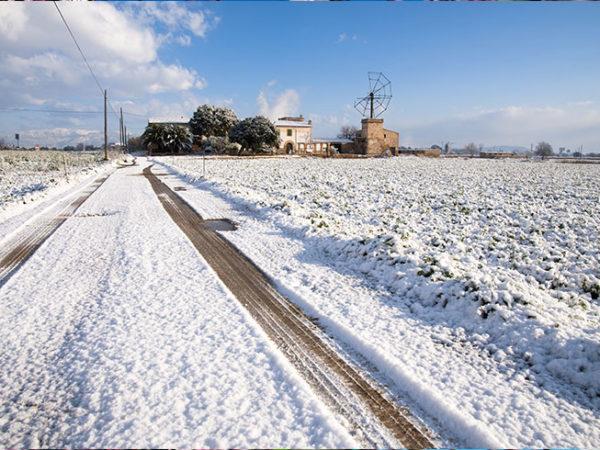 taxi-mallorca-winter-activities